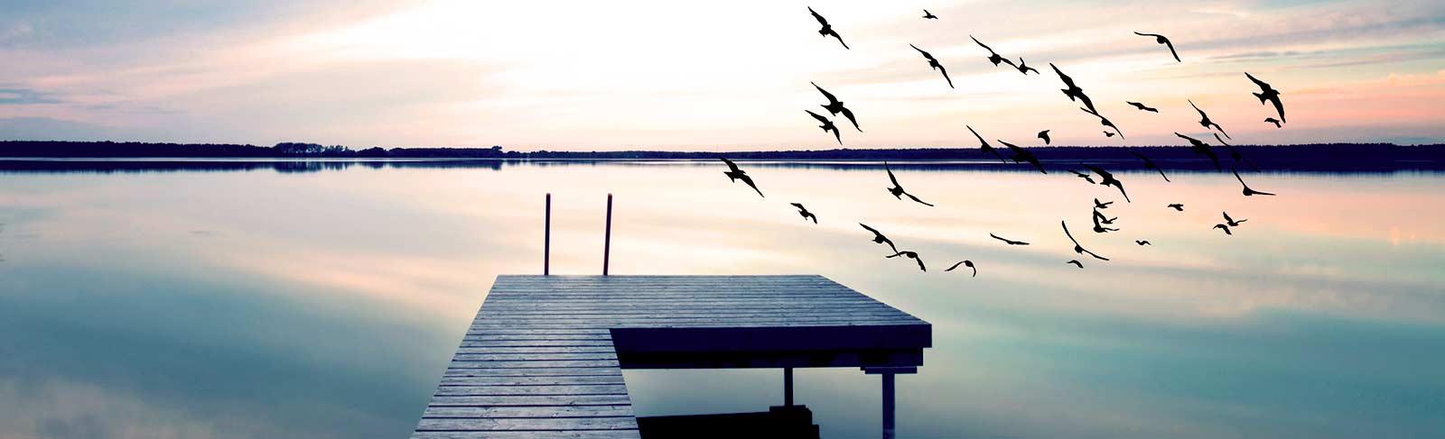 Steg am Wasser und fliegende Vögel