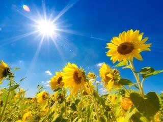Gesund Sonnenbaden