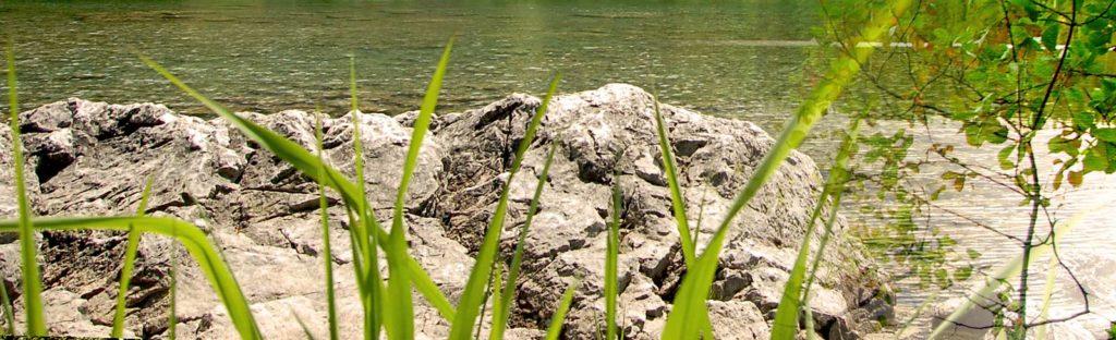Felsen und Grün am Wasser